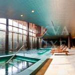 Barvikha Hotel & Spa - фото бассейна и зоны СПА