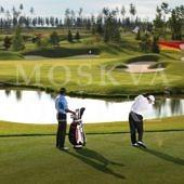 Поле для гольфа в клубном поселке Agalarov Estate