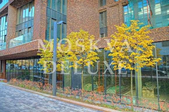 Пятикомнатная квартира 248 кв.м без отделки в ЖК «Дом на Бурденко»