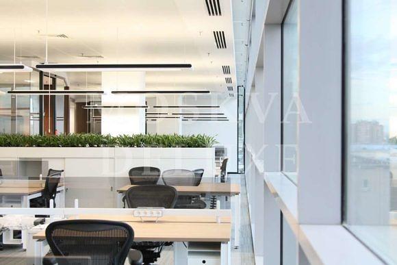 Зеленый офис компании Jones Lang LaSalle в БЦ «Вивальди Плаза»